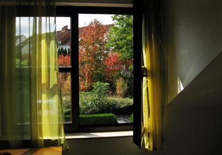 Projekt 52, 40. Woche, Thema: Wenn ich aus dem Fenster sehe …