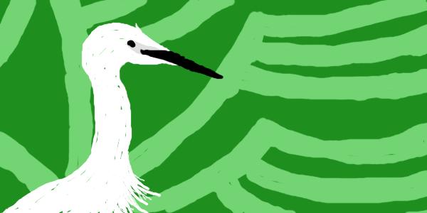 PHP Egret